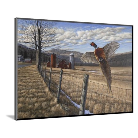 Pheasant Wood Mounted Print Wall Art By Bruce Dumas