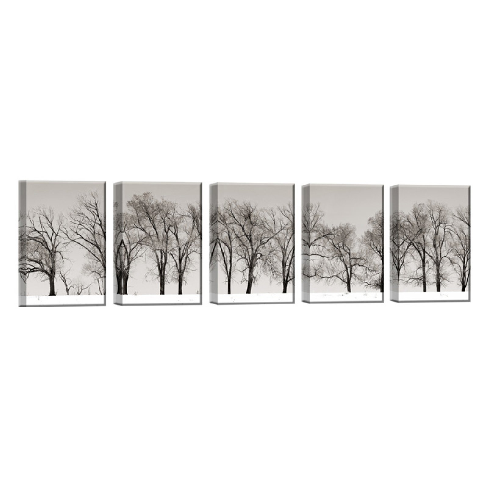 Ready2HangArt Winter Trees Wrapped Canvas Wall Art - Set of 5