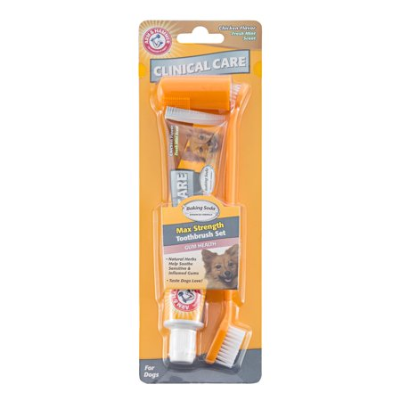 Dogtooth Violet (Arm & Hammer™ Clinical Care Gum Health Toothbrush & Toothpaste Set in Chicken Flavor)