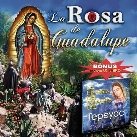 La Rosa De Guadalupe](De Risa De Halloween)