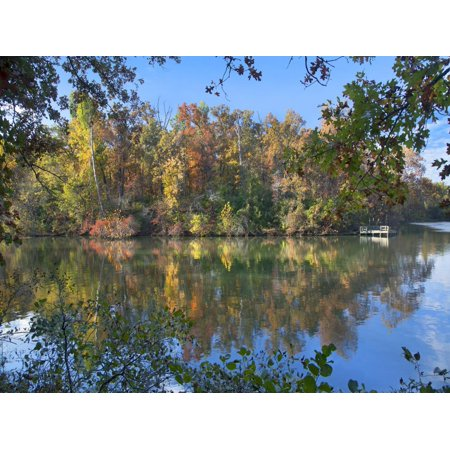 Oak-hickory forest at Lake Fayetteville, Arkansas Print Wall Art By Tim Fitzharris](Halloween Fayetteville Arkansas)