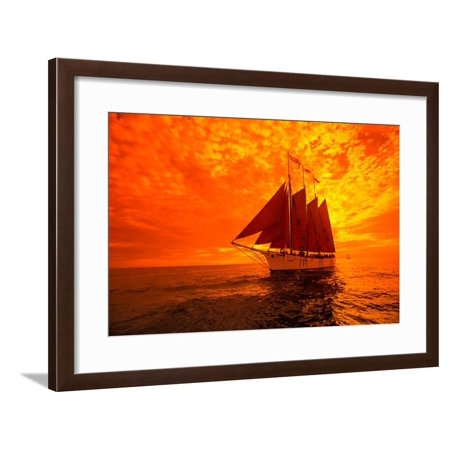 Tourists on Sailboat in the Pacific Ocean, Dana Point Harbor, Dana Point, Orange County, CA Framed Print Wall Art - Halloween Stores Orange County Ca
