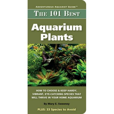 101 Best Aquarium Plants - eBook