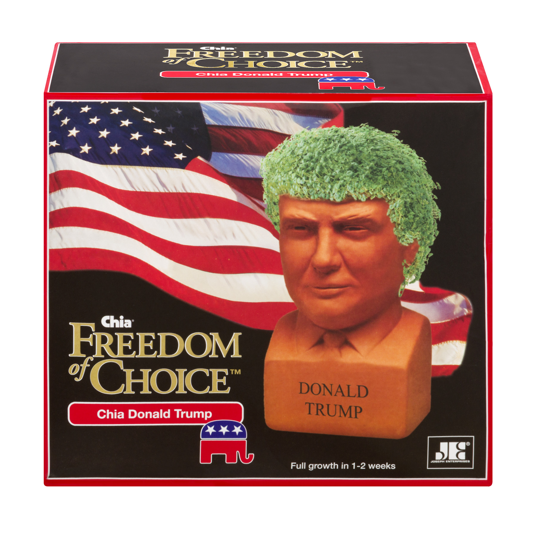 Chia Pet Donald Trump - Freedom of Choice Decorative Planter!