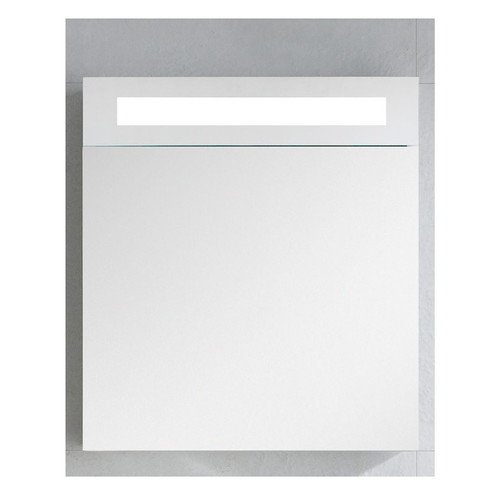 Orren Ellis Kircher 19.63'' x 21.63'' Surface Mount Medicine Cabinet with Lighting