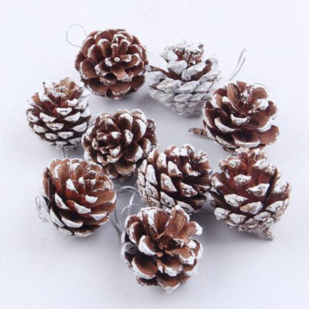 AkoaDa Natural Pine Cones, 9 Pieces Rustic Pinecones Bulk Ornaments for Gift Tag Party Hanging Fall Thanksgiving and Christmas Tree Decoration ()