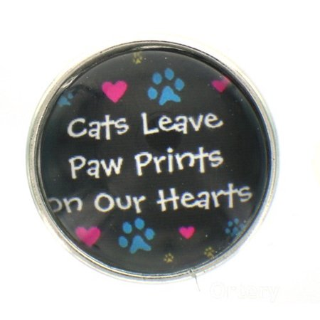 Snap glass  button charms  Jewelry Cats leave pawprints on our - Glass Heart Button