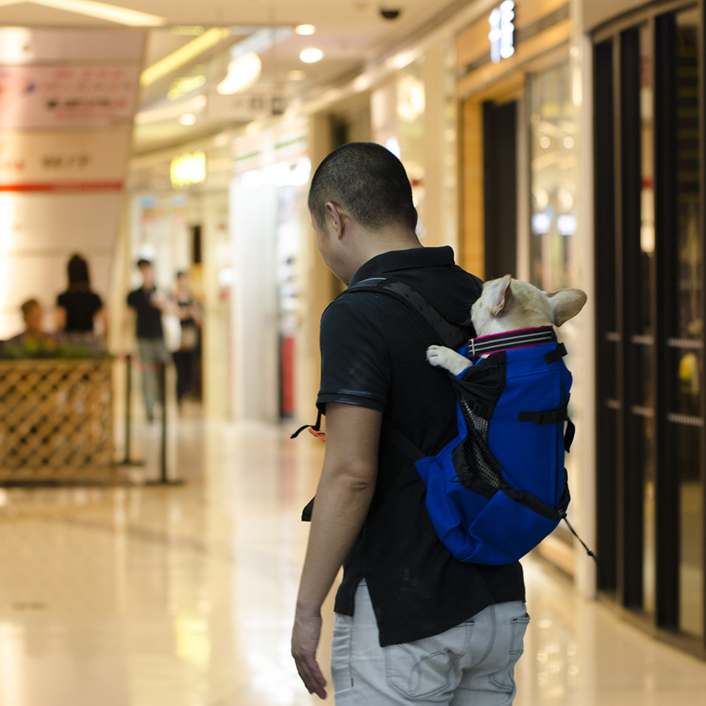 Dog Bag Carrier Pet Dog Backpack for Large Medium Small Dogs Breathable Travel Dog Bag for Riding Hiking - image 8 de 8