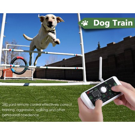 2 in 1 Kit Dog Fence and Dog Training System,Waterproof & Rechargeable Wireless Dog Fence for All size (Stubborn Dog Fence Kit)