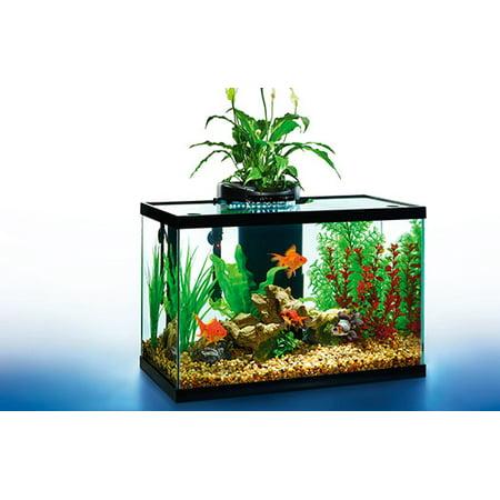 Aquaduo 20 gallon led aquarium kit for Walmart fish tanks 10 gallon