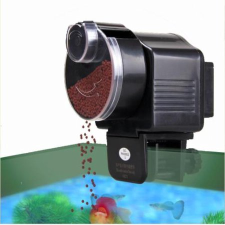 Zimtown Fish Food Automatic Feeder for Aquarium Tank Fish 12/24 Hours (Floating Fish Feeder)