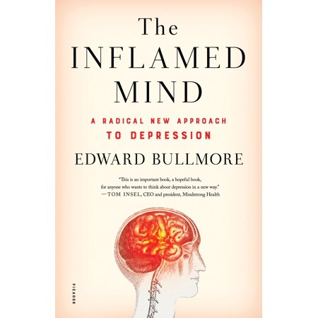 The Inflamed Mind : A Radical New Approach to