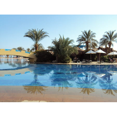 LAMINATED POSTER Egypt Desert Taba Holiday Palm Trees Swimming Pool Poster Print 24 x 36 (City Of Palm Desert)