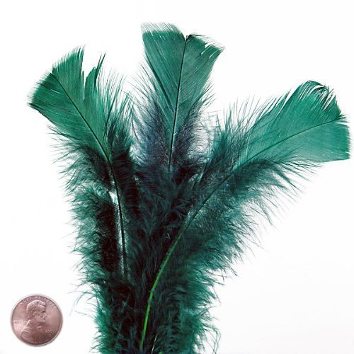 Large Forest Green Turkey Flat Feather (50/Pack)