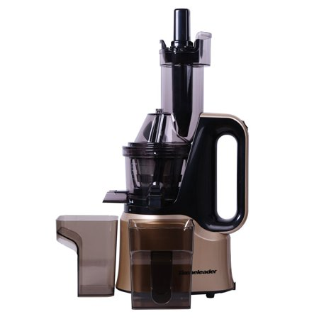 Masticating Juicer, GWAI Electric Slow Juicer (150W), Fruit and Vegetable Juice Extractor for Higher Nutritional Value, Champagne