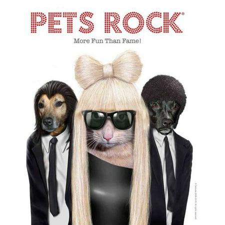 Pets Rock  More Fun Than Fame