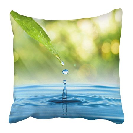 BPBOP Blue Fresh Water Drop From Green Leaf on Summer Rain Garden Raindrop Nature Plant Grass Droplet Pillowcase 20x20 (Tips For Planting Grass Seed In Summer)