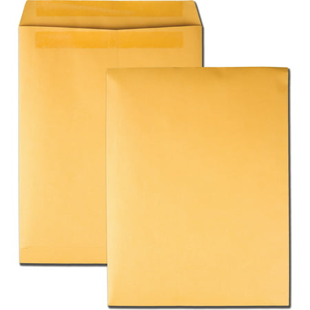 - Quality Park Redi Seal Catalog Envelope, 10 x 13, Brown Kraft, 250/Box