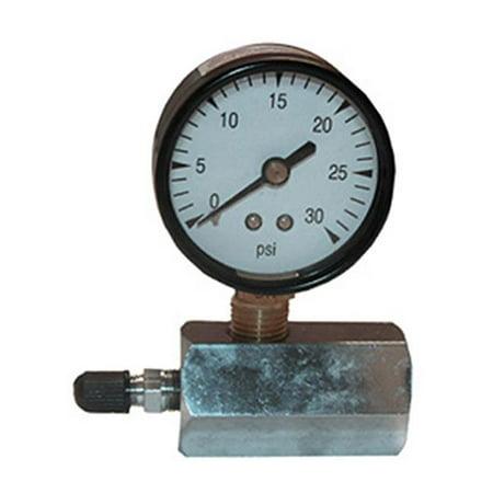Larsen Supply Jauge de test de gaz 13-1903 - 30 psi - image 1 de 1