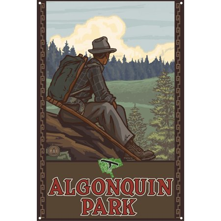 Algonquin Park Ontario Canada Mountain Hiker Man Forest Metal Art Print by Paul A. Lanquist (12