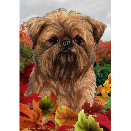 Brussels Griffon - Best of Breed Fall Leaves Large (Brussels Griffon Best In Show)