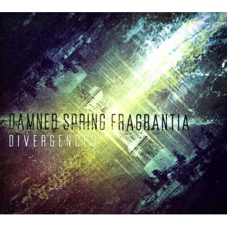 Divergences (CD) Spring Metal Compact