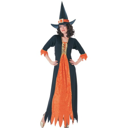 Adult Gothic Witch Standard Size Halloween Costume (Gothic Witch)