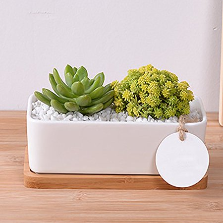 """Mr. Garden Ceramic Planter Pots L11.1""""xW2.4""""xH2"""", Rectangle Indoor/Outdoor Terracotta Pot Clay Ceramic Pottery Planter, Great Crafts for Cactus/Flower/Succulent Plants, White, 2 Pack"""