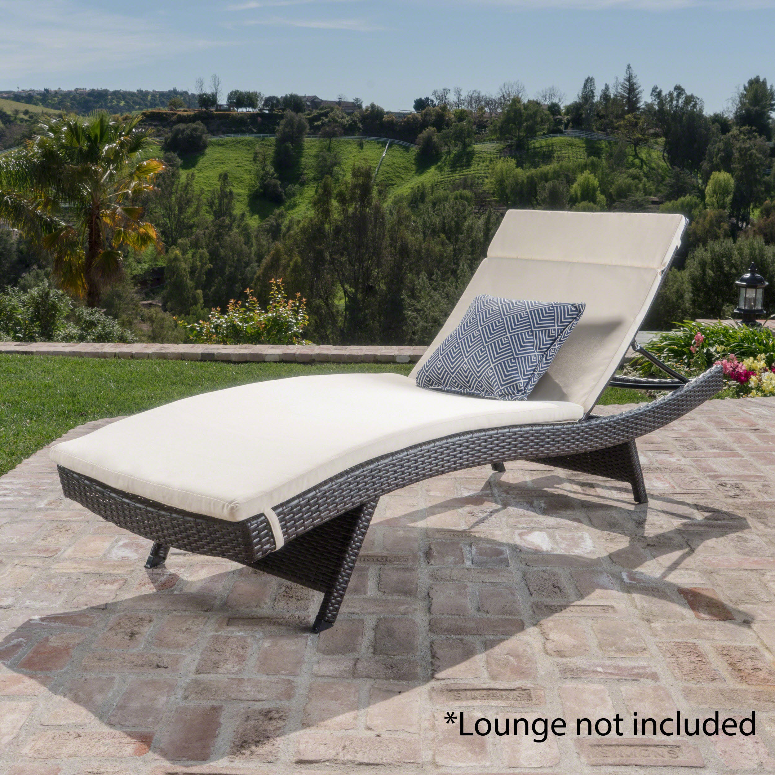 Anthony Outdoor Chaise Lounge Cushion, Beige