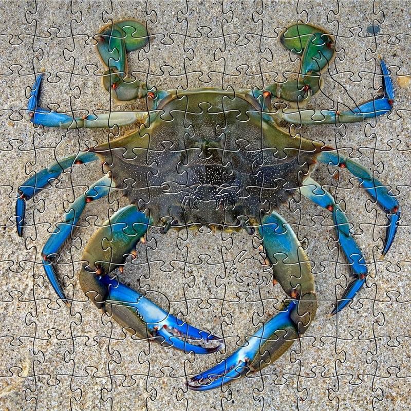 Zen Art & Design Artisanal Wooden Jigsaw Puzzle Blue Crab- 204 Piece Medium by Zen Art & Design