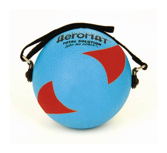 Power Yoga Weight Ball in Teal and Red