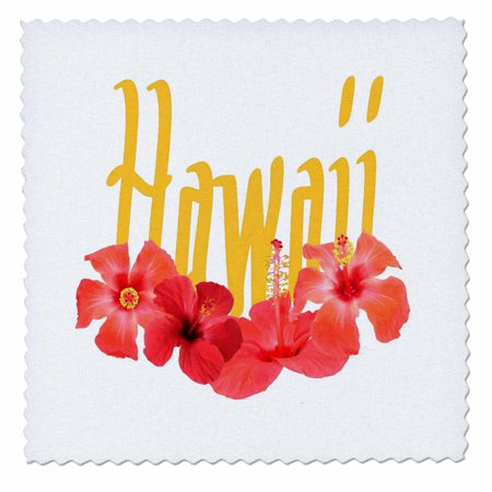 3dRose Hawaii Text With Aloha Hibiscus Garland - Quilt Square, 10 by 10-inch - Cheap Hawaiian Garlands