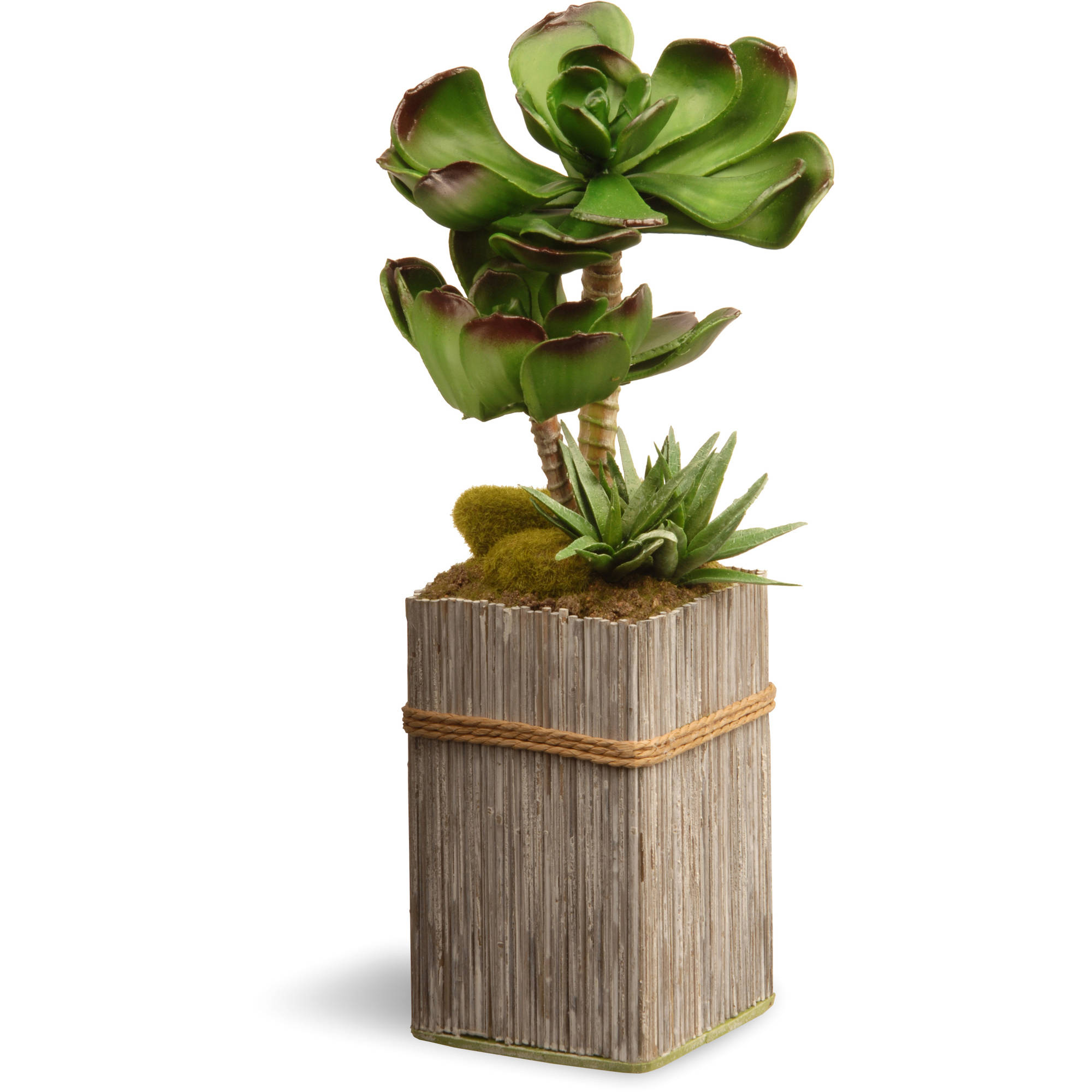 """National Tree Artificial 11"""" Garden Accents Succulent Plant"""