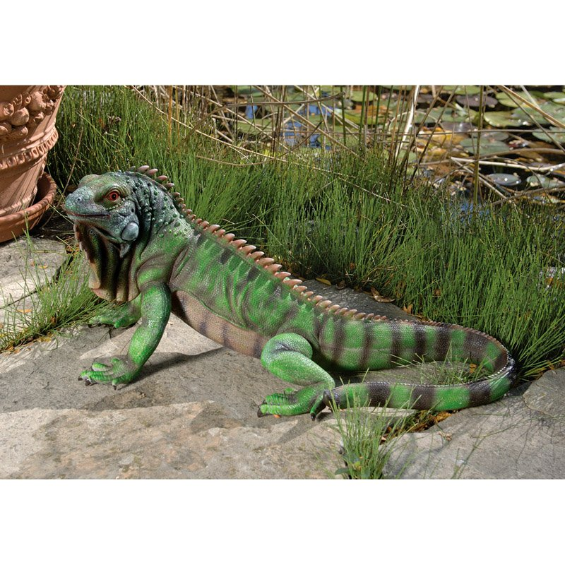 Design Toscano Iggy the Iguana Garden Statue by Design Toscano