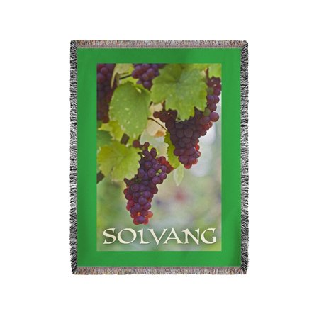 Solvang  California   Wine Grapes On Vine  3   Lantern Press Photography  60X80 Woven Chenille Yarn Blanket