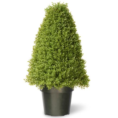 National Tree Company 30-inch Boxwood Tree with Green Pot