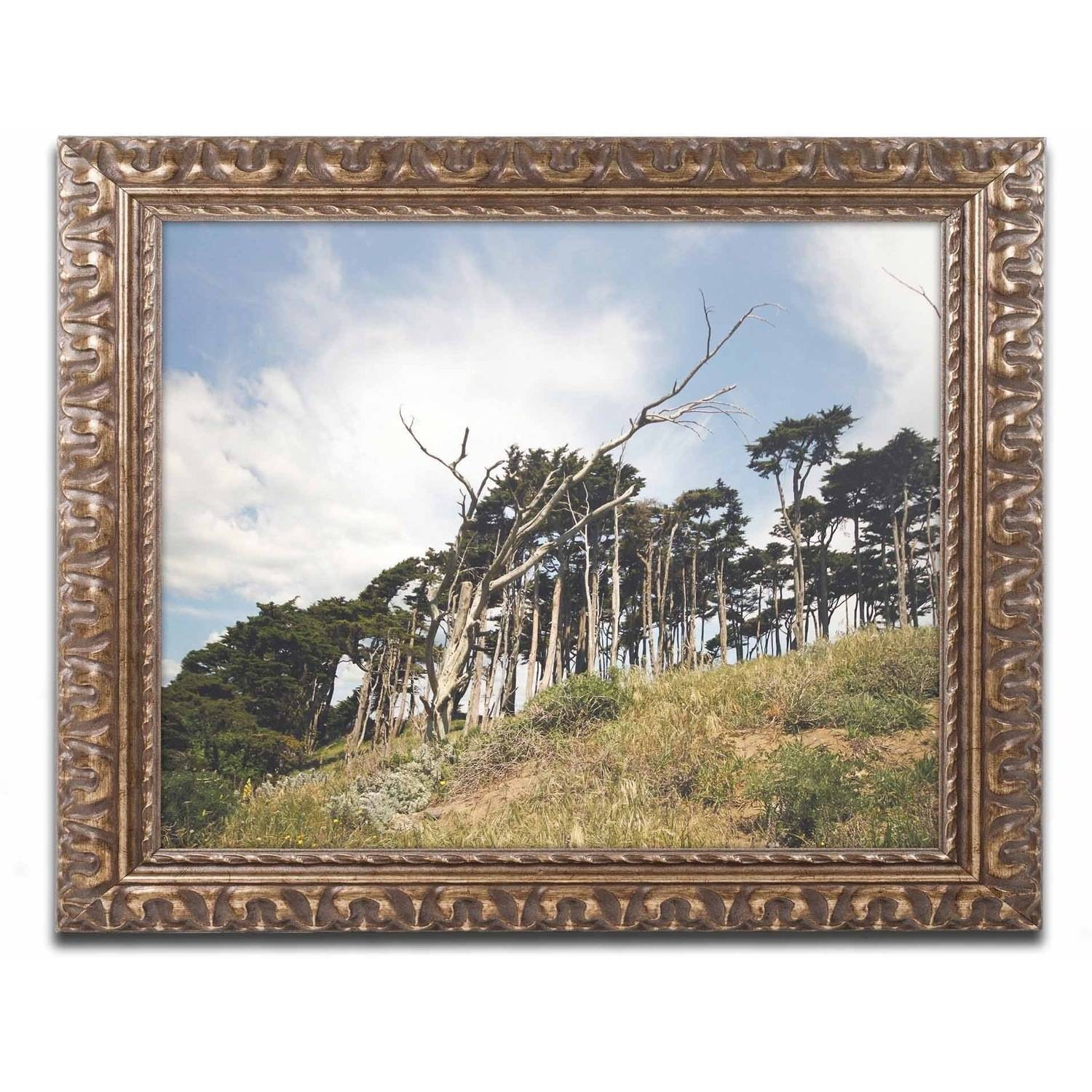 Trademark Fine Art 'Presidio Trees' Canvas Art by Ariane Moshayedi, Gold Ornate Frame