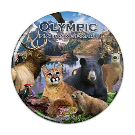 Olympic National Park Washington WA Animals Cougar Bear Elk Beaver Pinback Button Pin Badge Atlanta 1996 Olympics Pin