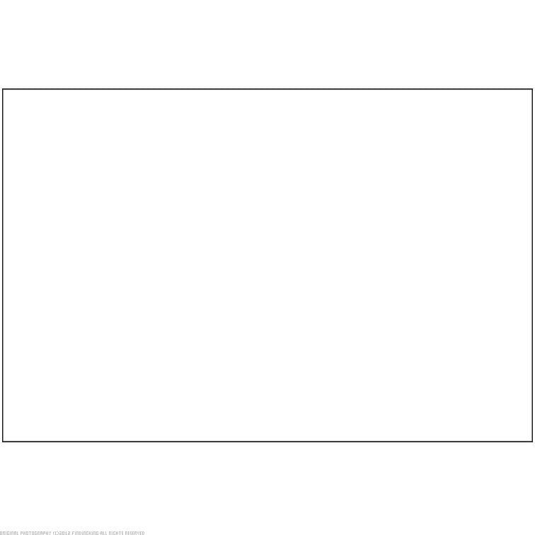 "BAZIC White Foam Board 20"" x 30"" 50Pcs by Generic"