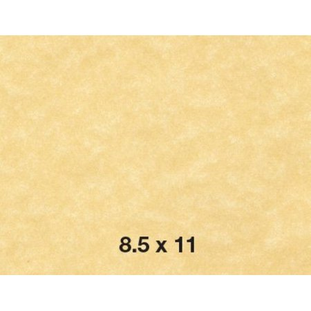New Stock (8.5 X 11 Stationery Parchment Recycled Paper 65lb. Cover Cardstock - New Champagne - (50 Sheets Per)
