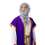Biblical Long Grey Greek Roman Moses Zeus Wig Beard Costume Set