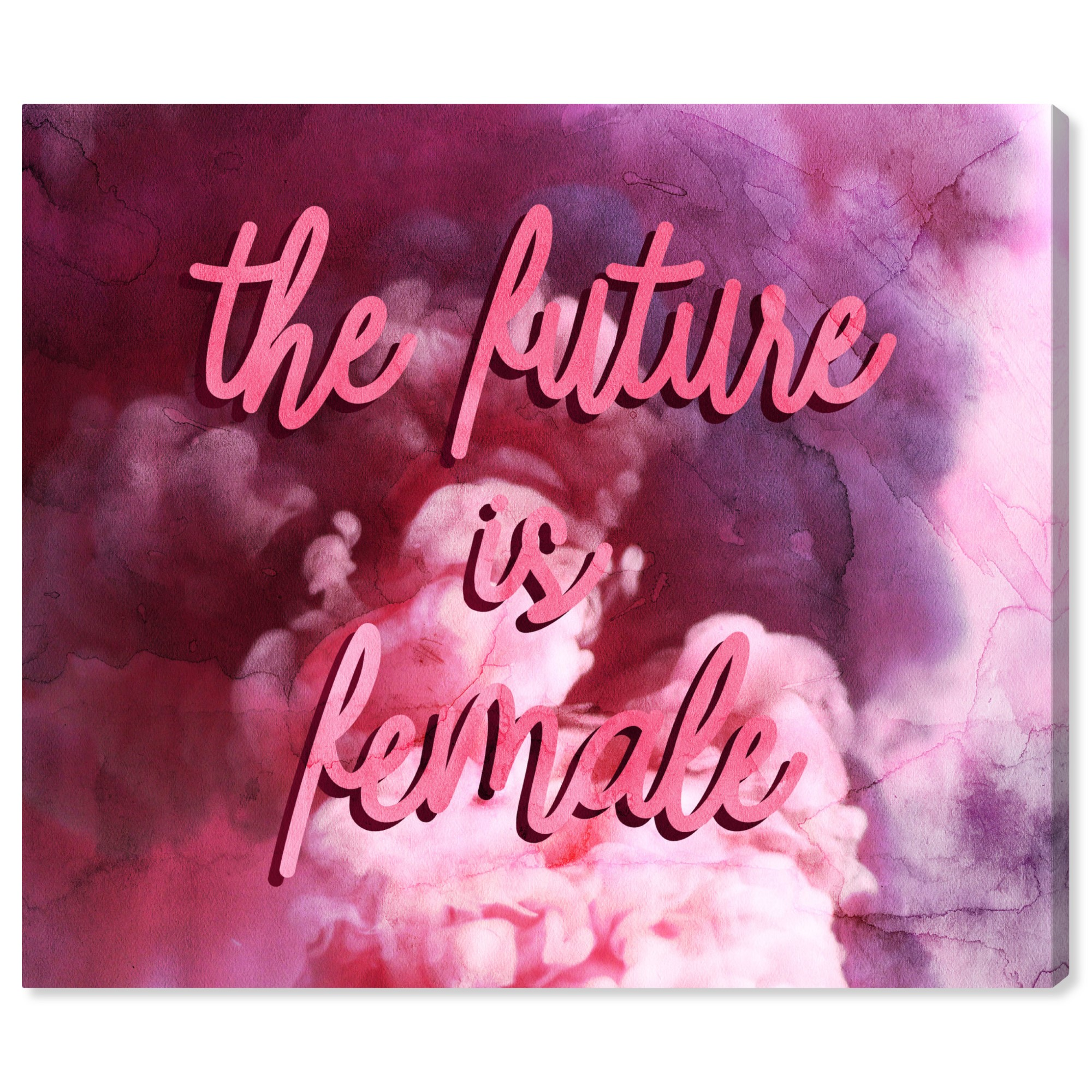 Runway Avenue Typography And Quotes Wall Art Canvas Prints The Future Is Female Smoke Empowered Women Quotes And Sayings Pink Pink Walmart Com Walmart Com
