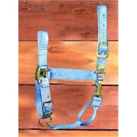 Hamilton 1-Inch Nylon Halter with Adjustable Chin, Berry Blue - Large Size