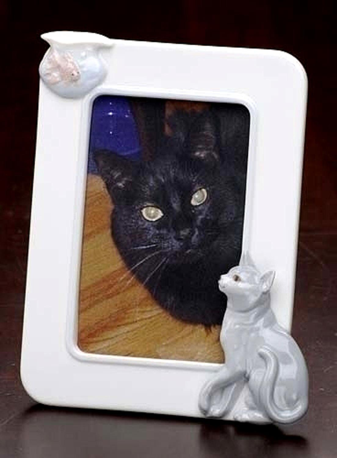 Club Pack of 12 Handcrafted Porcelain Cat & Fish 4x6 Photo Picture ...