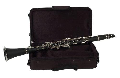 Palatino WI-801-C B Flat Clarinet with Case Multi-Colored by Palatino