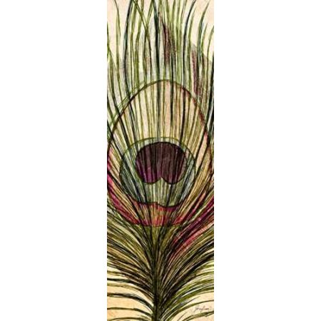 Peacock Feather I Canvas Art - Josefina (12 x 36)