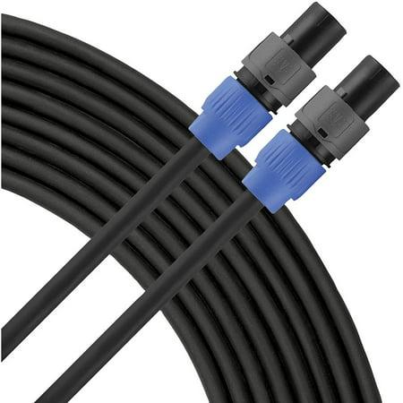 Livewire Elite 12g Speaker Cable Speakon to Speakon 10 ft. Black (Livewire Cable Tester)