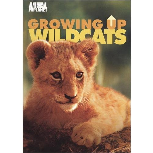 Growing Up Wildcats