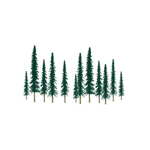 """SS Tree, Conifer 2-4"""" (36) Multi-Colored"""