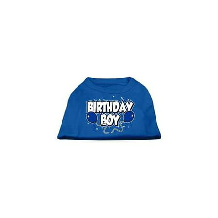 Birthday Boy Screen Print Shirts Blue Sm 10